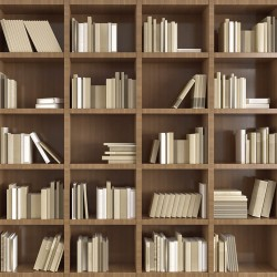 Wall murals wall modern library books in 2 colors wood