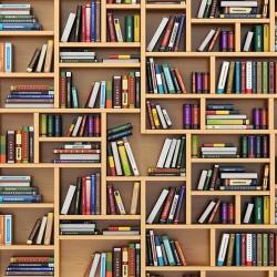 Wall murals wall modern library