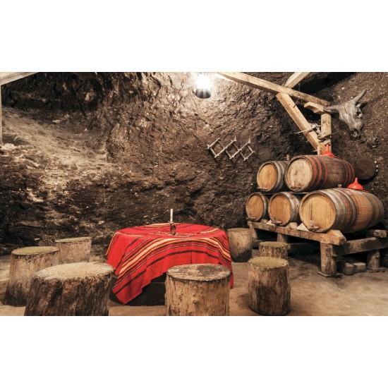 Photo mural bulgarien winery type