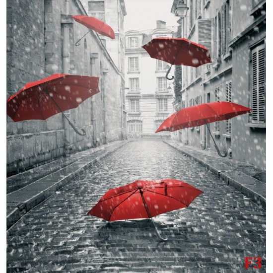 Photo mural art umbrellas in black and red