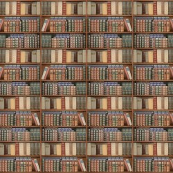 Wallpapers mural library with old books 2