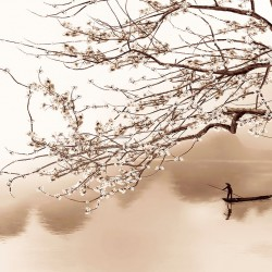 Wallpapers classical design of a Japanese twig and a boatman