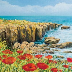 Wallpapers mural beautiful coast with poppies