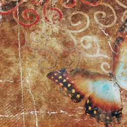 wallpapers wall art butterfly vintage