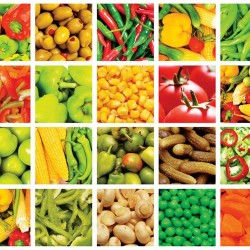 Photo mural Collage wall of mix vegetables