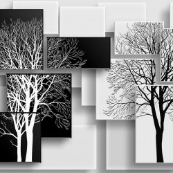 Photo murals 3d geometric in white and black with graphics