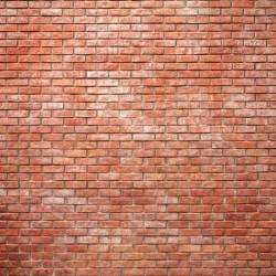 Photo mural imitation brick wall standard red bricks