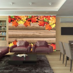 Wall mural structure wood and autumn leaves