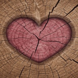 Photo mural wooden structure in the shape of a hart