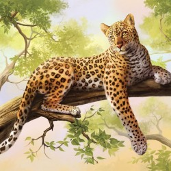 Wall murals leopard on a tree model 2