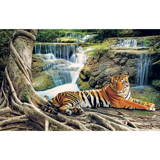 Photo mural tiger on the background of forest waterfalls