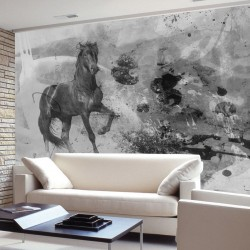 Wallpapers mural art wall with black horse