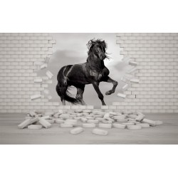 Wall mural black horse in the broken brick wall