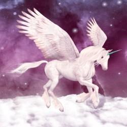 Wall murals white horse Pegasus