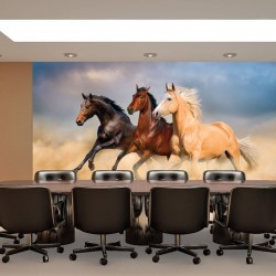 Wall mural color horses on sunset background