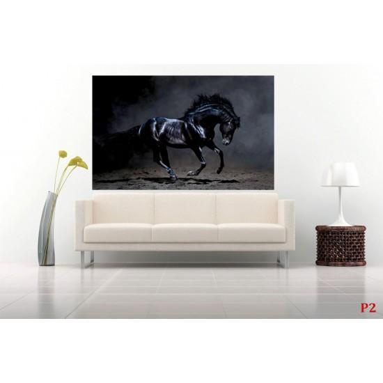 Wallpapers mural beautiful black horse
