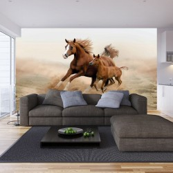 Wall mural brown horse with a little horsey