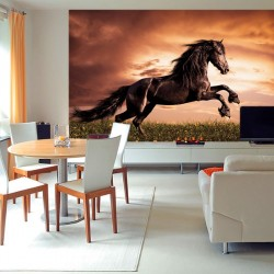 Wall mural with a elegant dark horse on a field