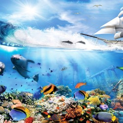 Wall mural 3D model with seabed fish and ship