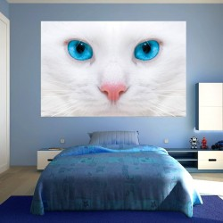 photo murals white cat with blue eyes