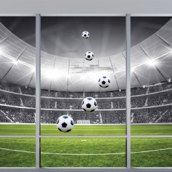 Wallpapers mural Imitation window view stadium in 2 variants