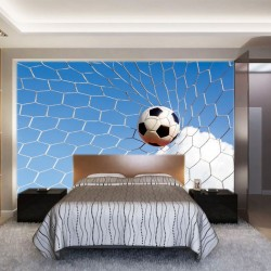 Wallpapers mural football ball in the net