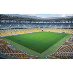 Photo mural big stadium view