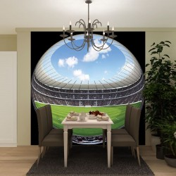 Wallpapers mural spherical football field