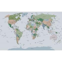 wallpaper  political world map gray background