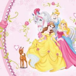 Disney Princess photo wallpaper in decorative frame