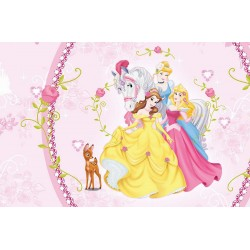 Disney Princess photo wallpaper in decorative frame